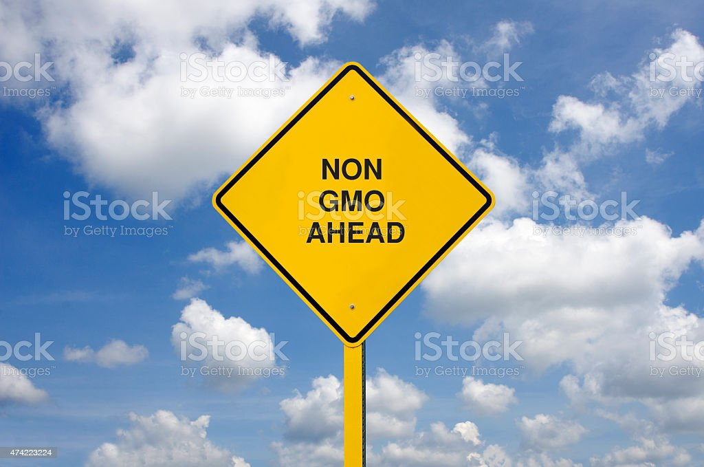 Genetically Modified Food Road Sign in Front of Clouds stock photo