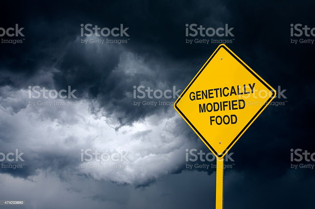 Genetically Modified Food Road Sign in Front of Storm Clouds stock photo