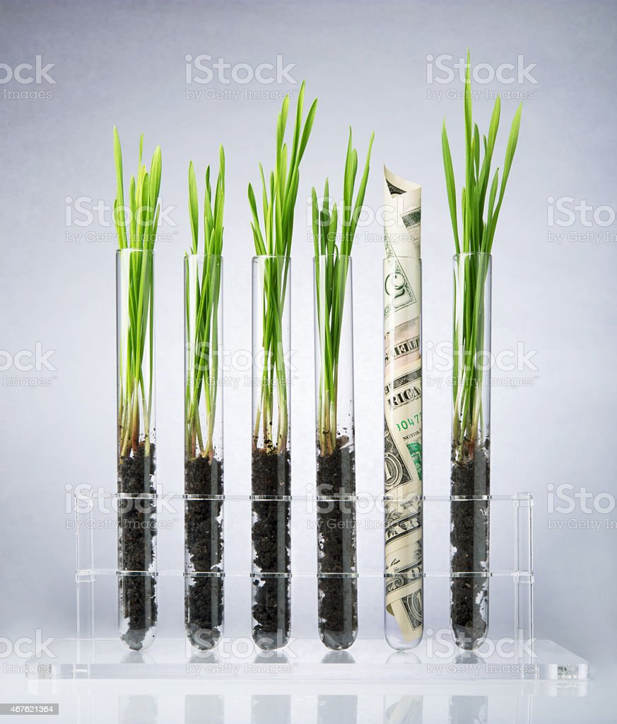 Genetically modified plants costs stock photo
