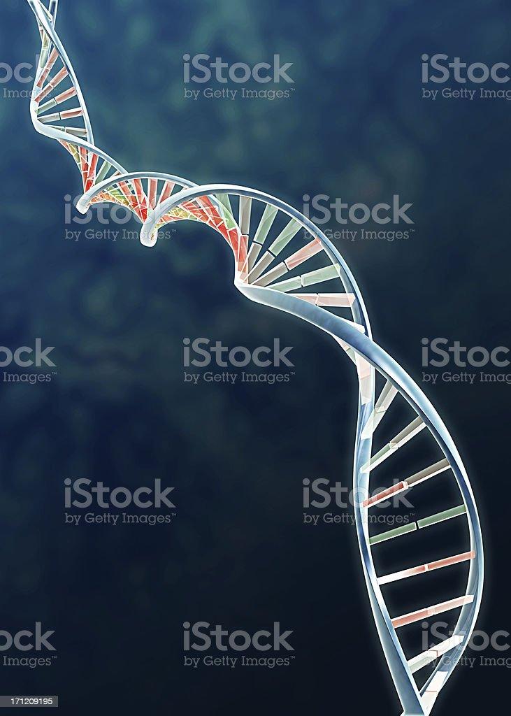Genome - DNA double helix stock photo