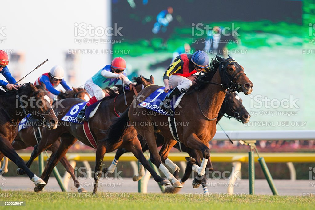 Gentildonna wins Japan Cup 2013 stock photo