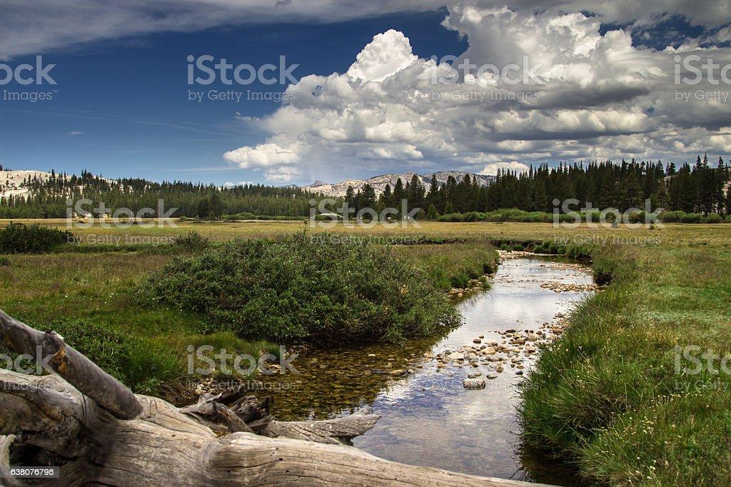 Gentle River in Tuolumne Meadows, Yosemite National Park stock photo