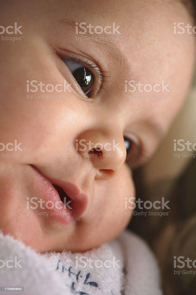 gentle smile royalty-free stock photo