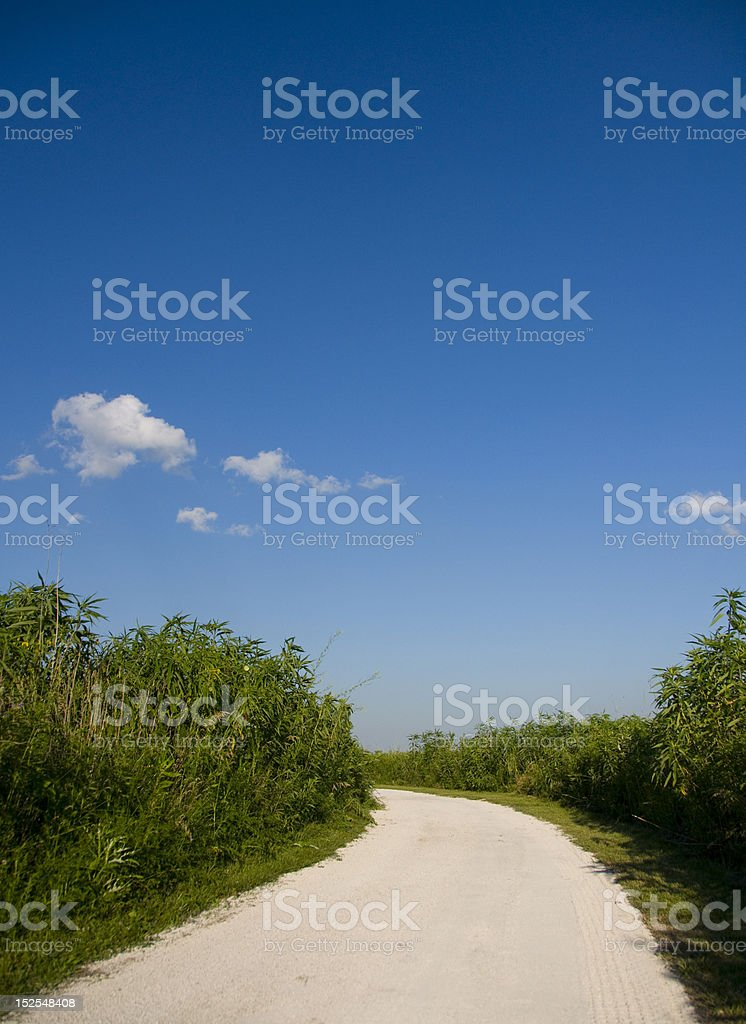 Gently curving road through jungle with blue sky royalty-free stock photo