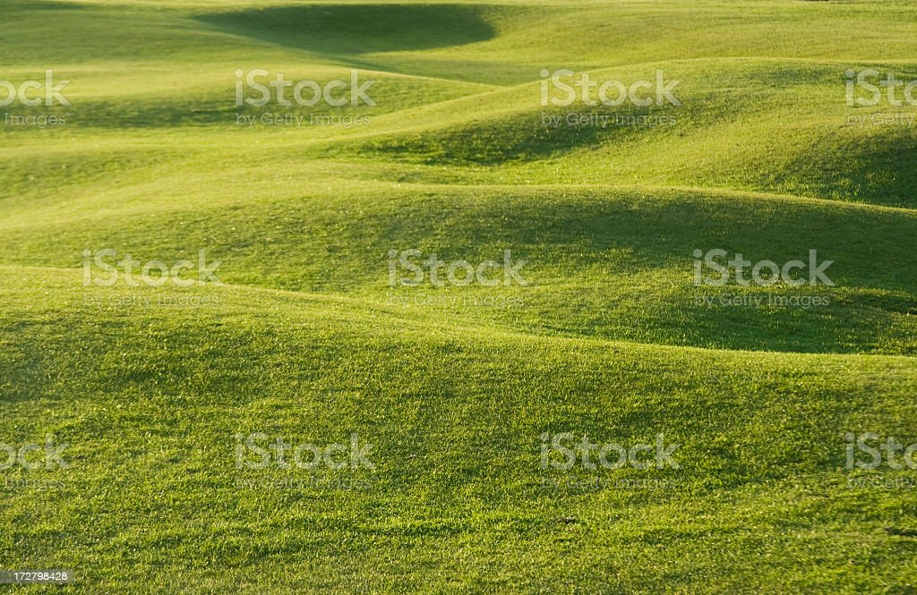 Gently rolling turf on a golf course stock photo