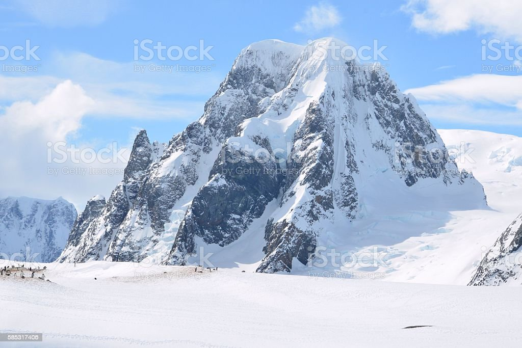 Gentoo Penguins and Mountain stock photo