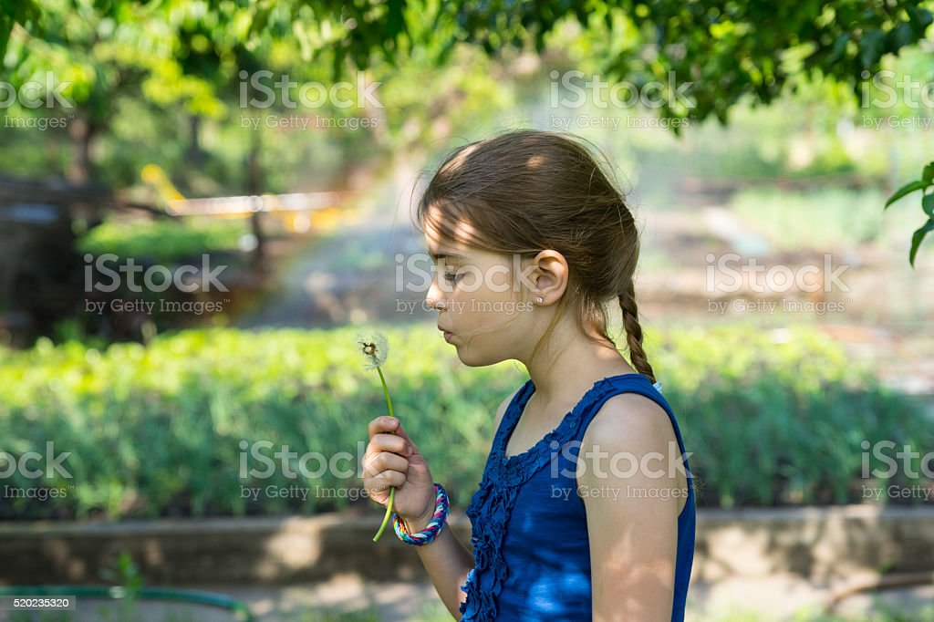 Genuine girl holding a fragile fuzzy dandelion stock photo