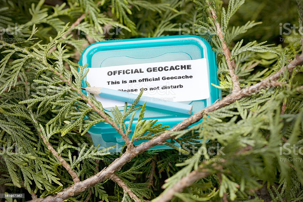Geocache in fir tree stock photo