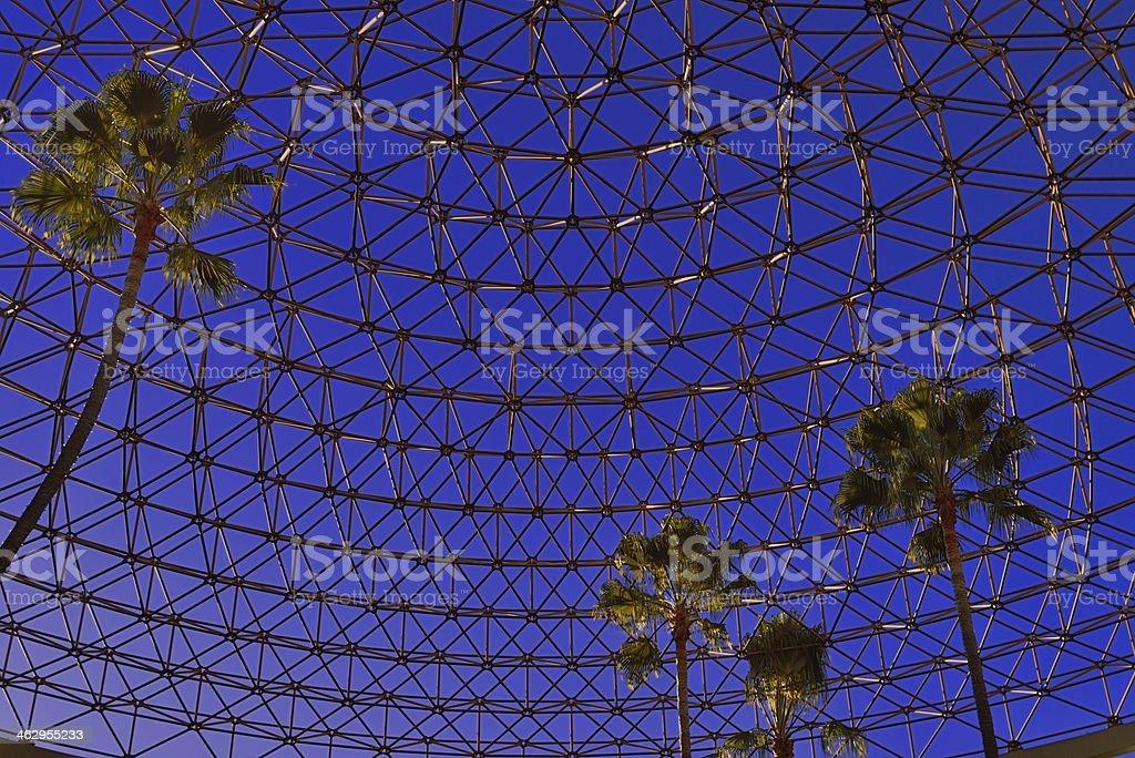 Cúpula geodésica y palmeras - foto de stock