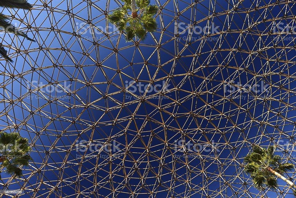 Cúpula geodésica y palmeras foto de stock libre de derechos