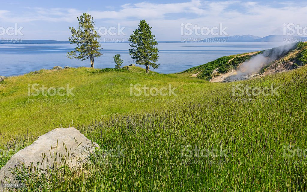 Geological activity on bank of Yellowstone lake, Wyoming, USA. stock photo