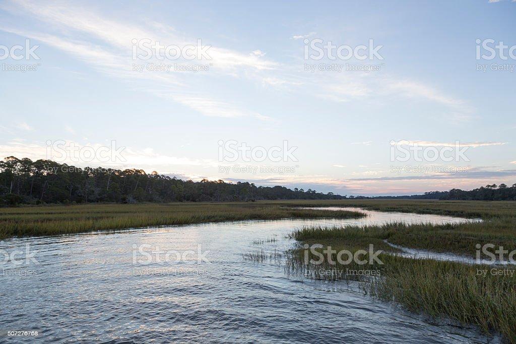 Georgia Coast / Lowcountry stock photo
