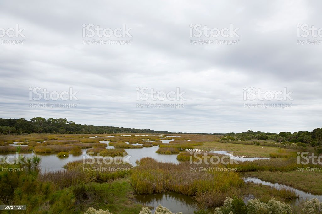 Georgia Coast / Lowcountry stock photo