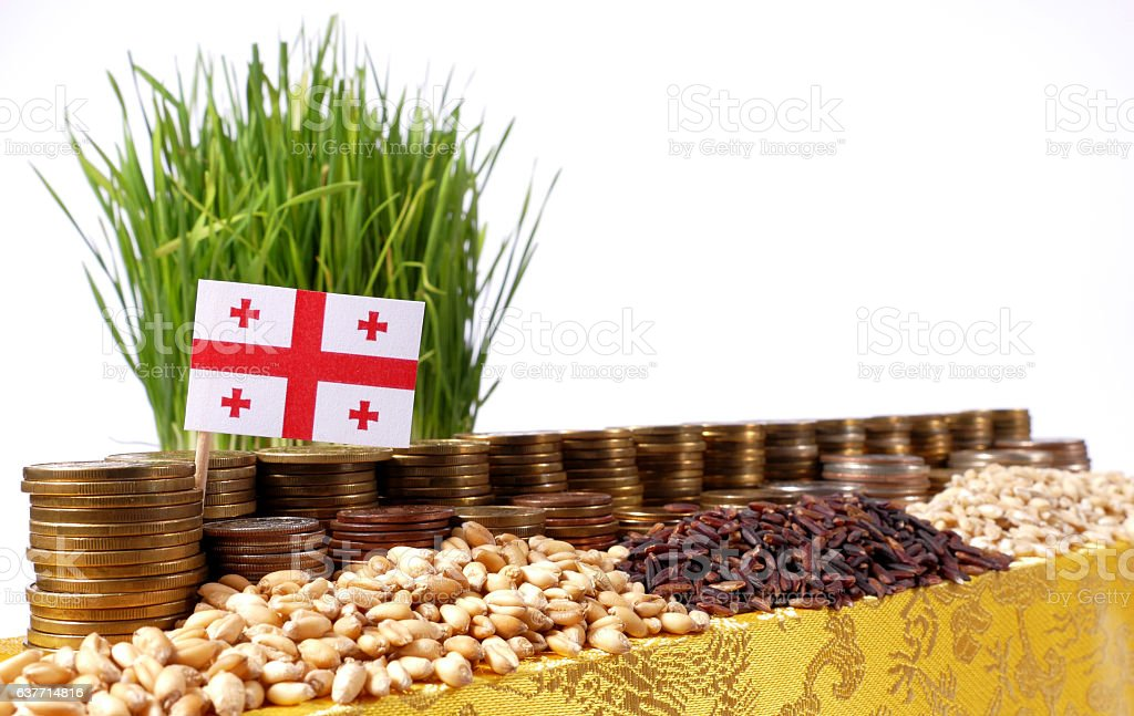 Georgia flag with stack of coins and piles of wheat stock photo