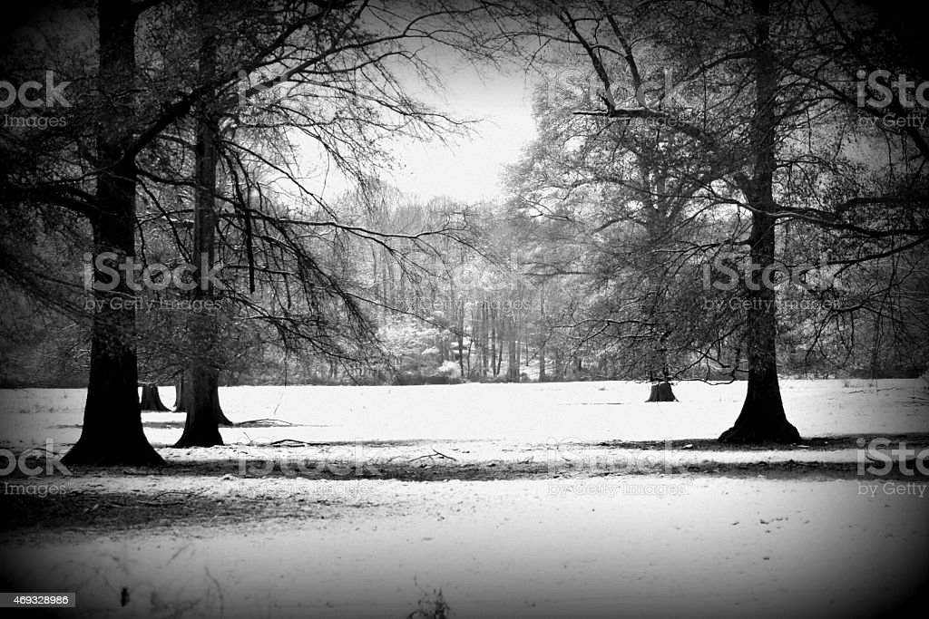 Georgia Meadow in Snow stock photo