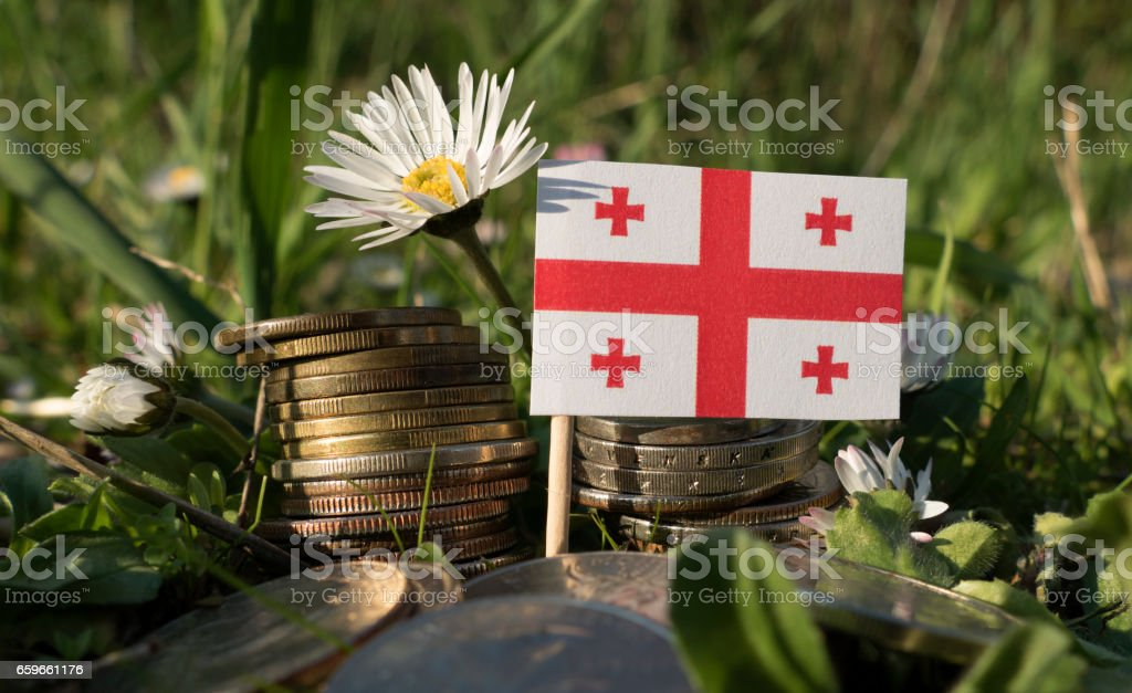 Georgian flag with stack of money coins with grass and flowers stock photo