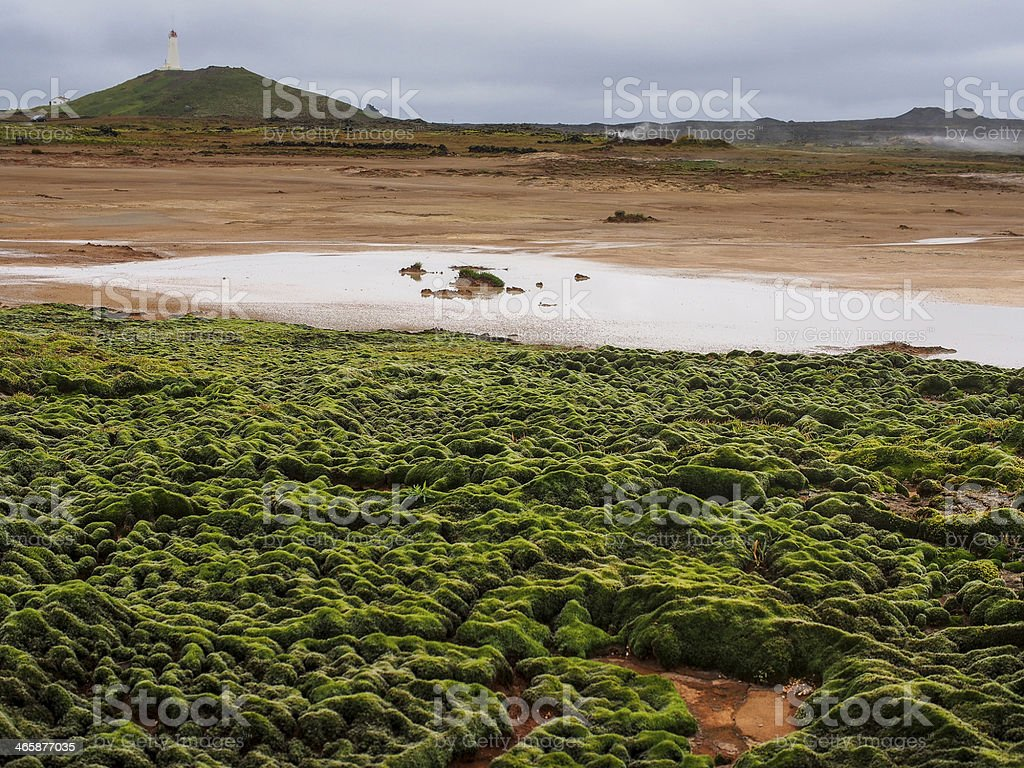Geothermal field of Gunnuhver, Reykjanes , Iceland royalty-free stock photo