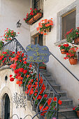 Geraniums on the steps of a typical house of Pescocostanzo