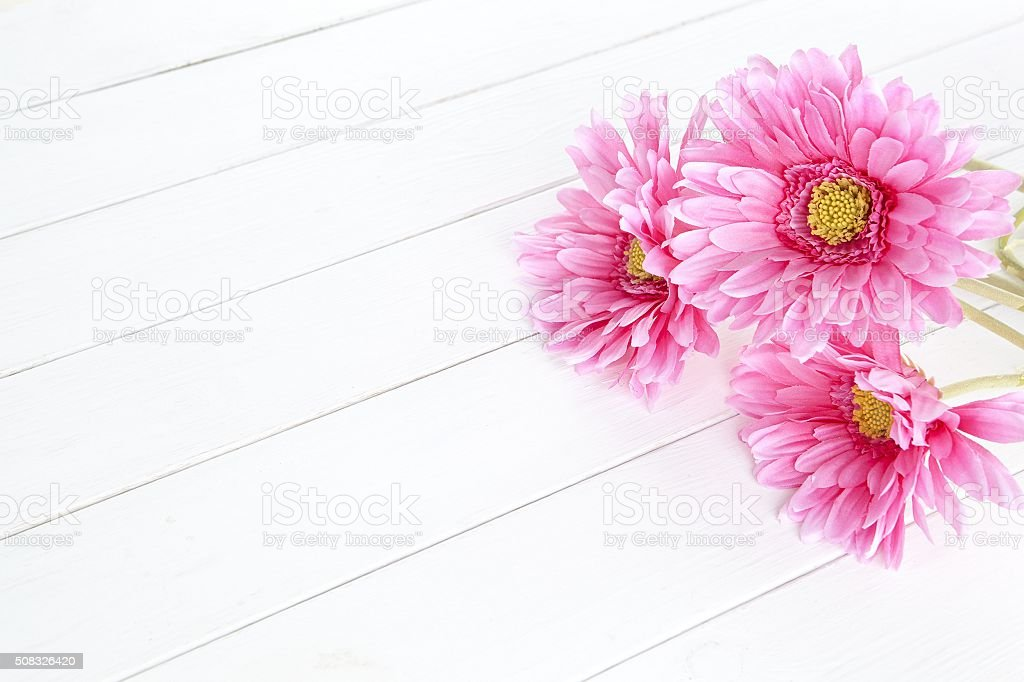 gerbera flower on white wood background stock photo