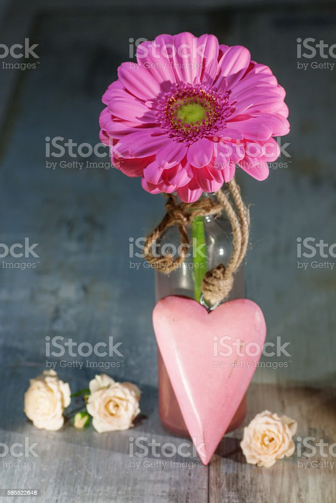 Gerbera flower with a pink heart stock photo