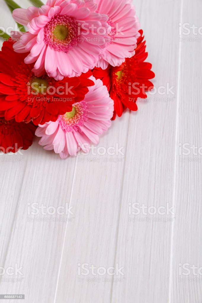 Gerbera flowers on wooden board. Love design. stock photo