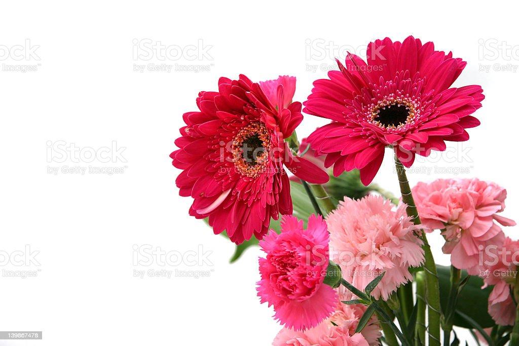 Gerberas & carnations royalty-free stock photo