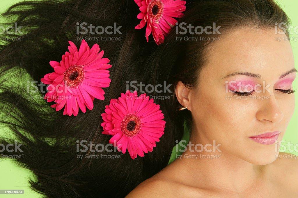 Gerbra Dreaming royalty-free stock photo