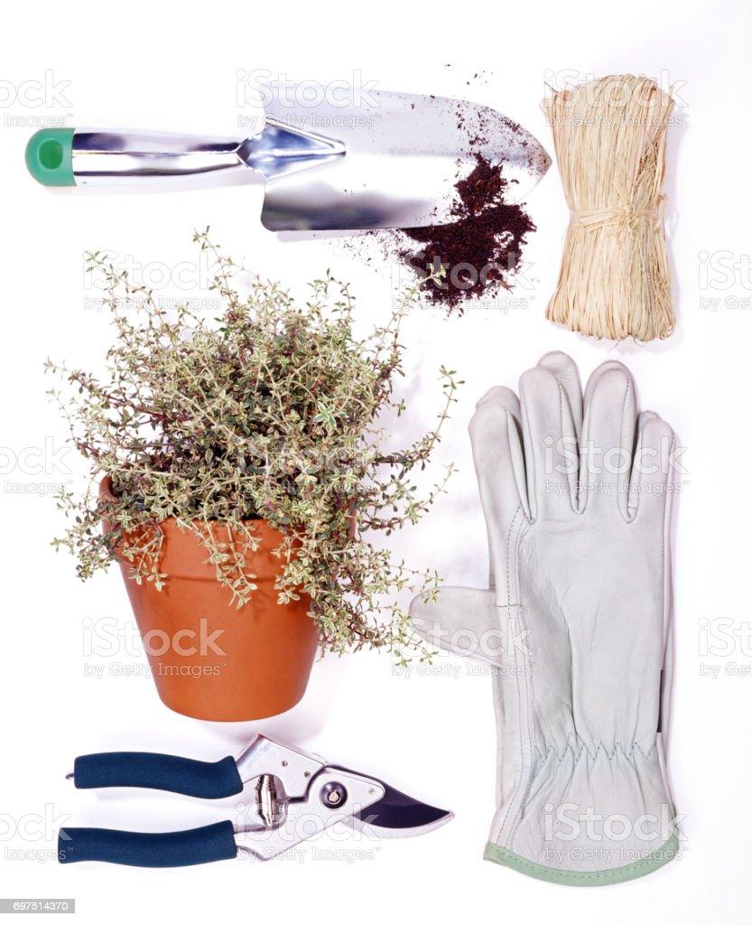 gerdening tools stock photo
