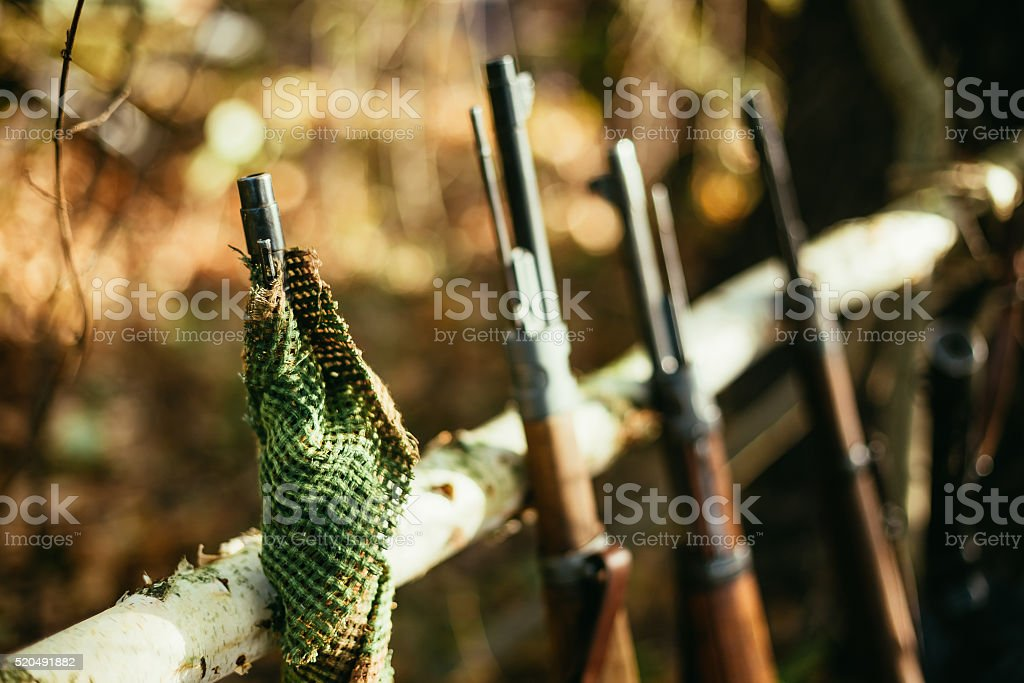 German and Soviet russian rifles of World War II stock photo
