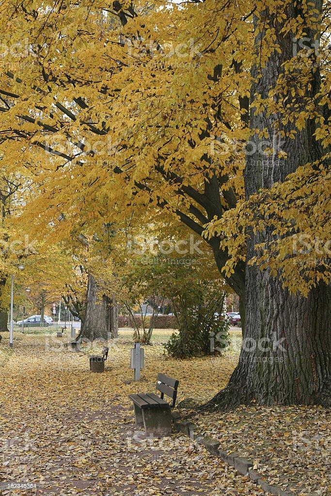 German Park royalty-free stock photo
