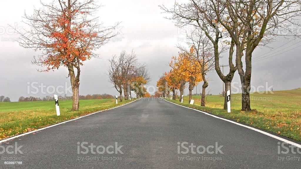German Road 1 stock photo