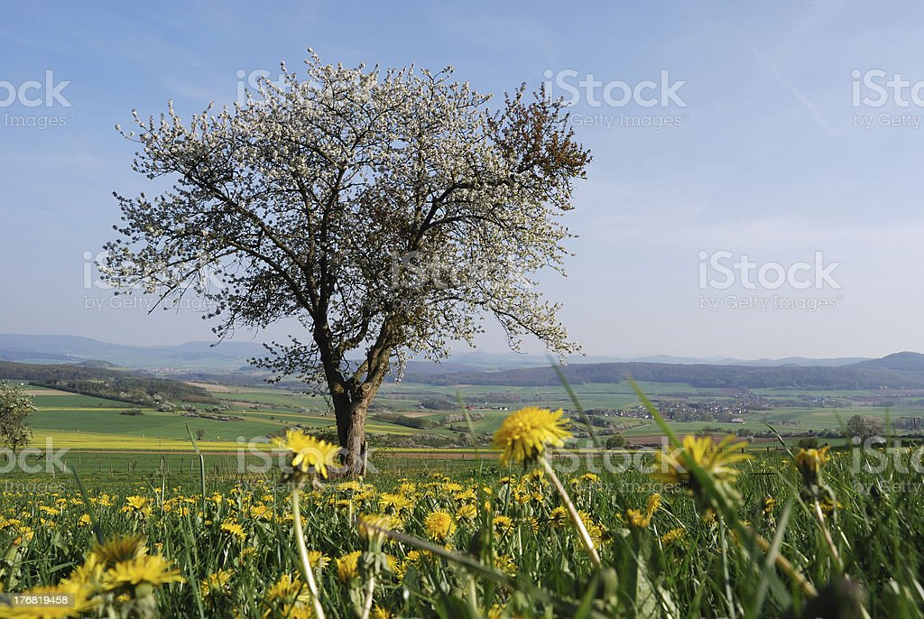 German spring landscape royalty-free stock photo