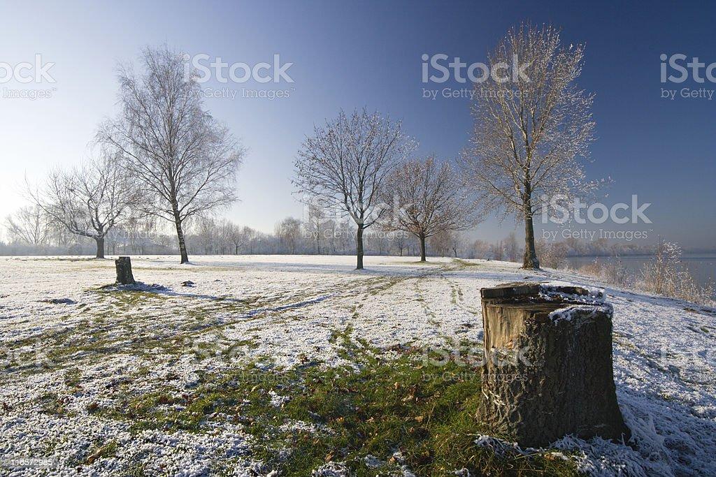German Winter Landscape royalty-free stock photo