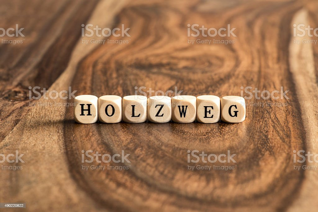 German word HOLZWEG (means wrong track) on wooden cubes stock photo