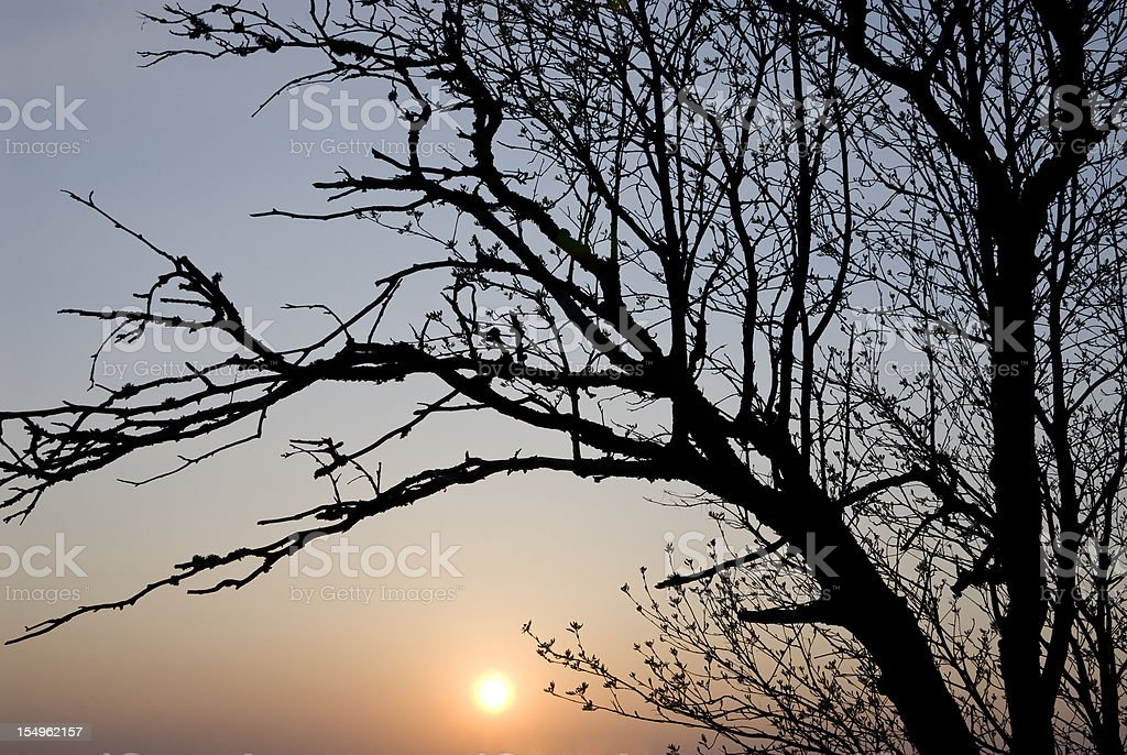 Germany Sunset royalty-free stock photo