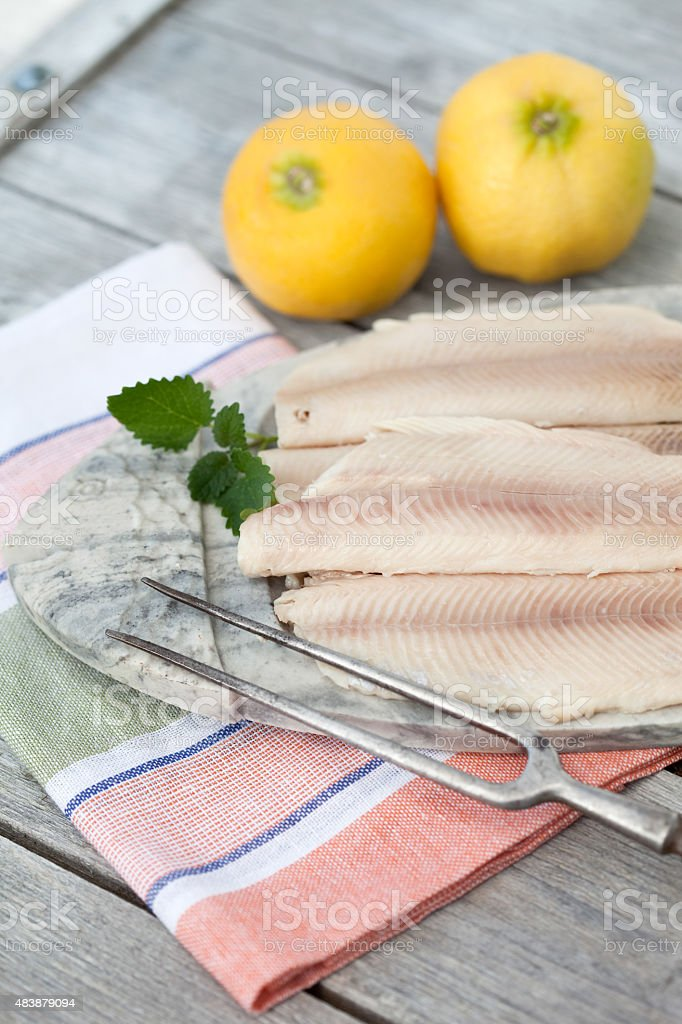 Germany,Close up of trout fillets in plate with lemons stock photo