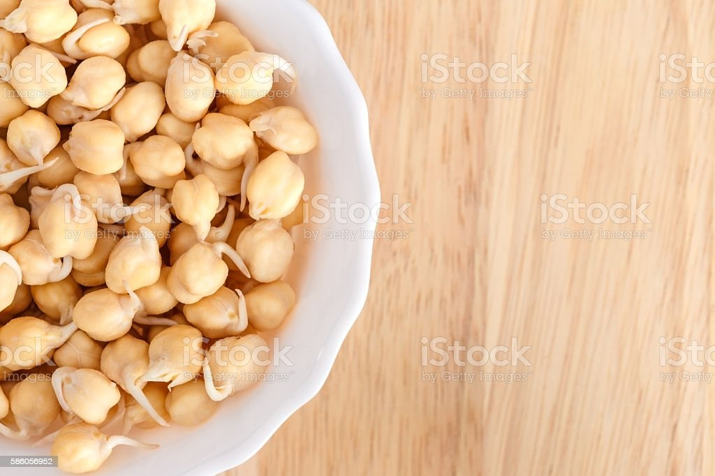 germinated chickpeas in a white bowl stock photo