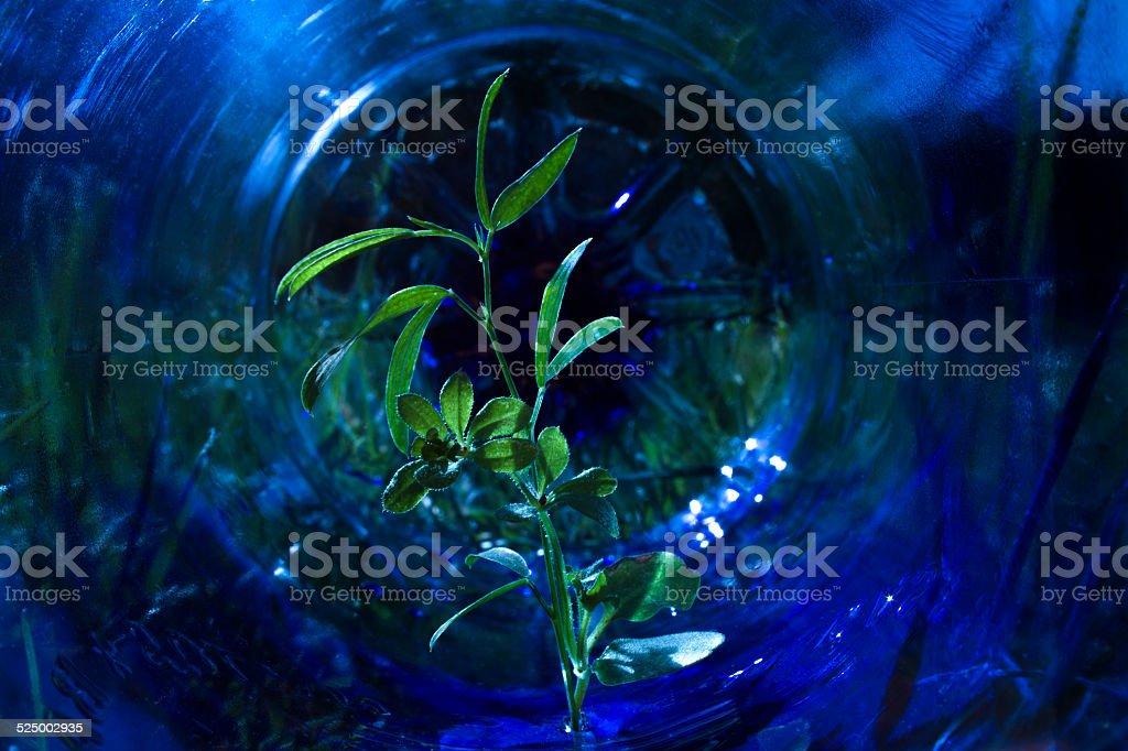 Gestion de residuos Medio ambiente stock photo