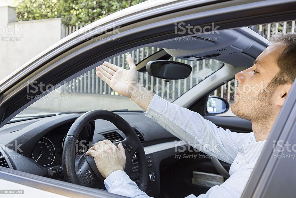Gesturing in the Car royalty-free stock photo