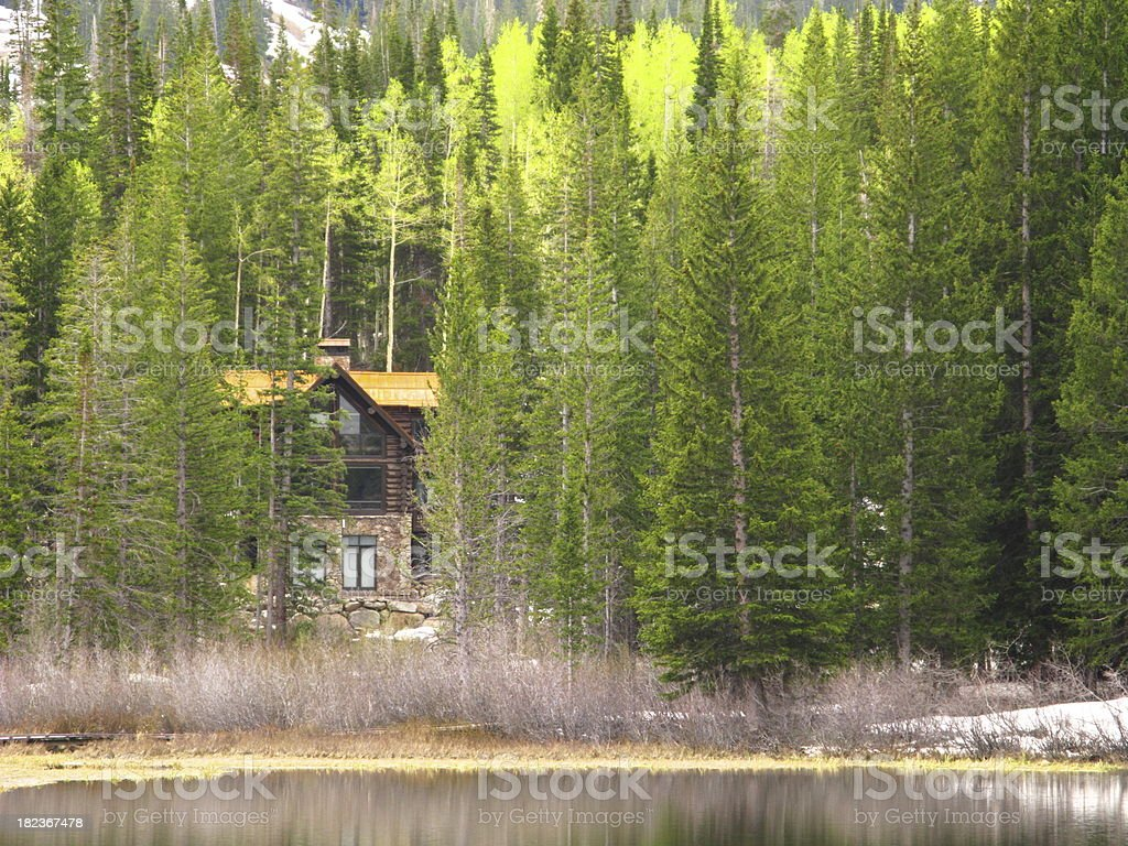 Get Away Cabin Forest Woods Winter stock photo