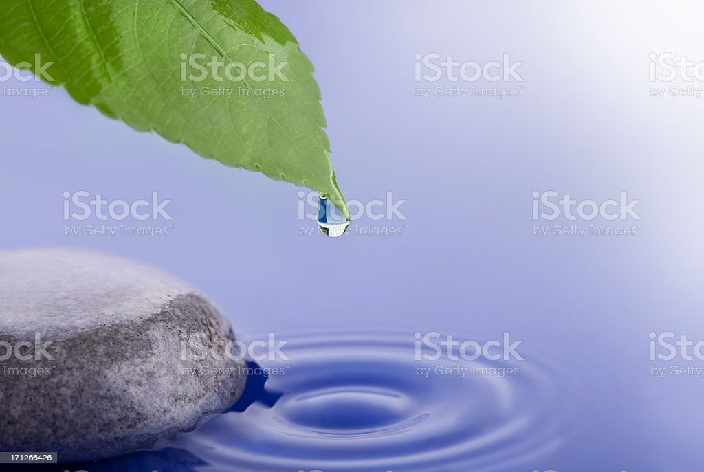 Get the balance royalty-free stock photo