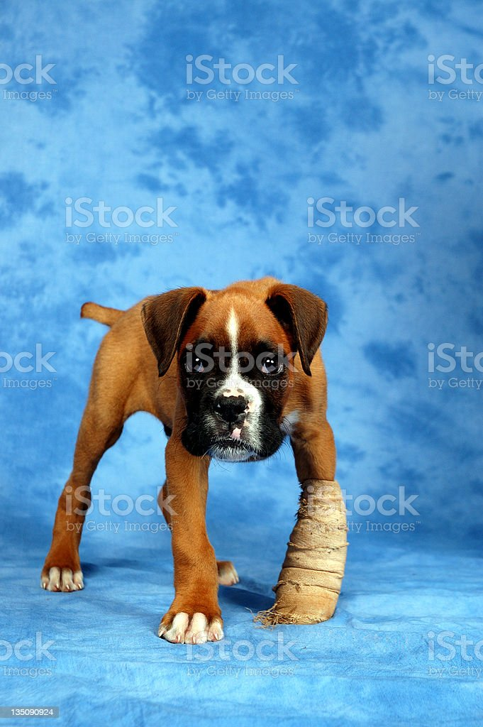 Get well soon. royalty-free stock photo
