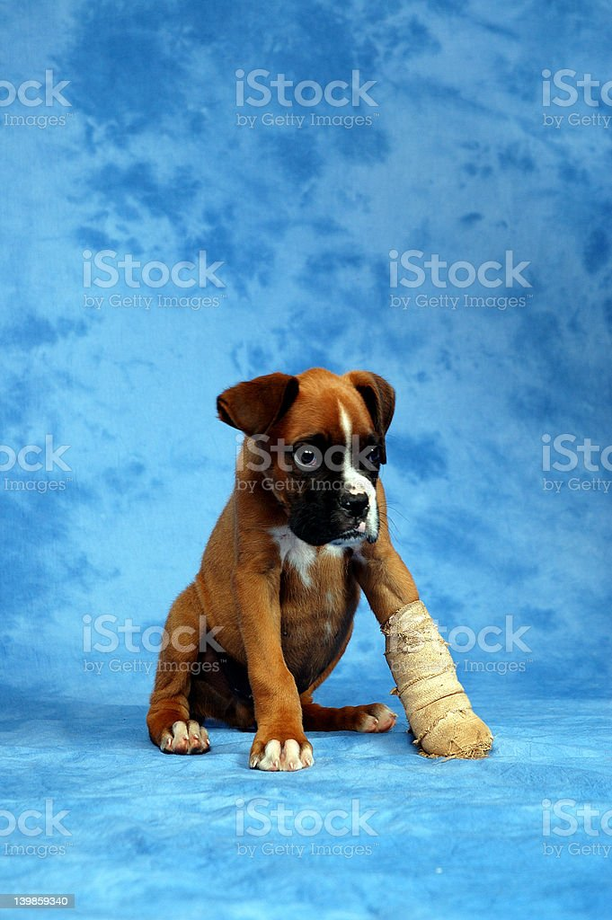 Get well soon... royalty-free stock photo