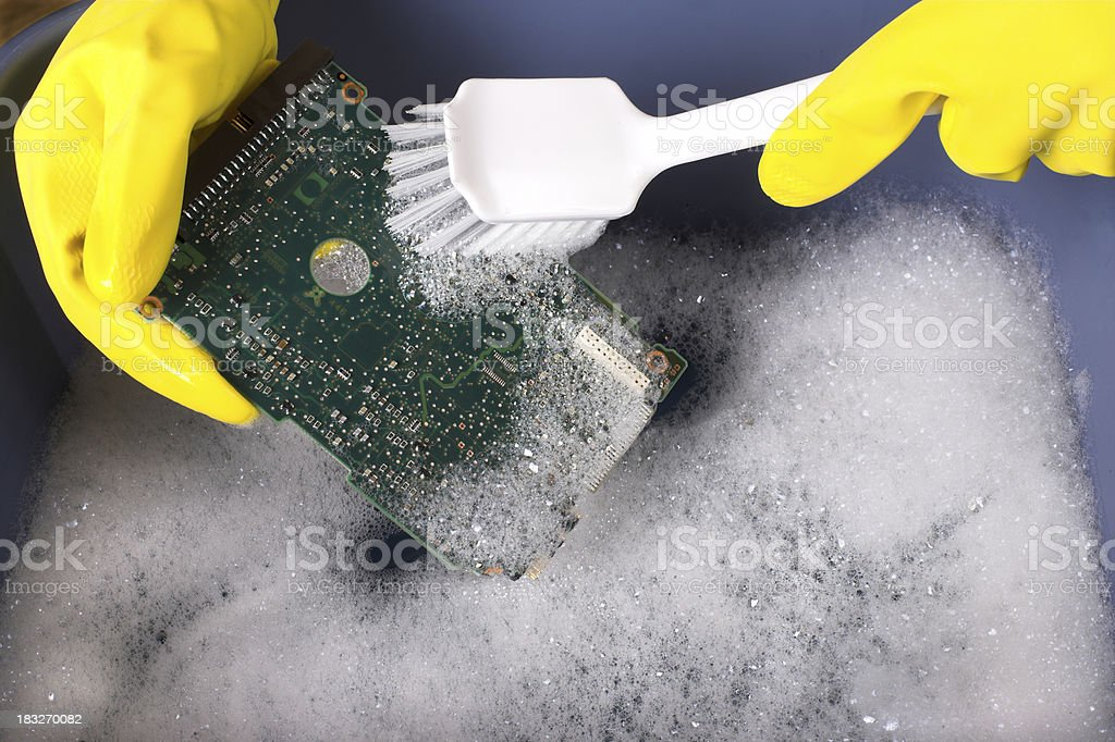 Getting The Bugs Out royalty-free stock photo