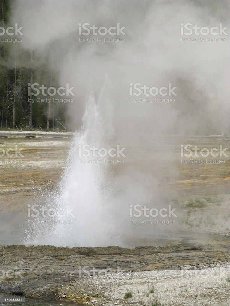 Geyser Erupting Hot Spring stock photo