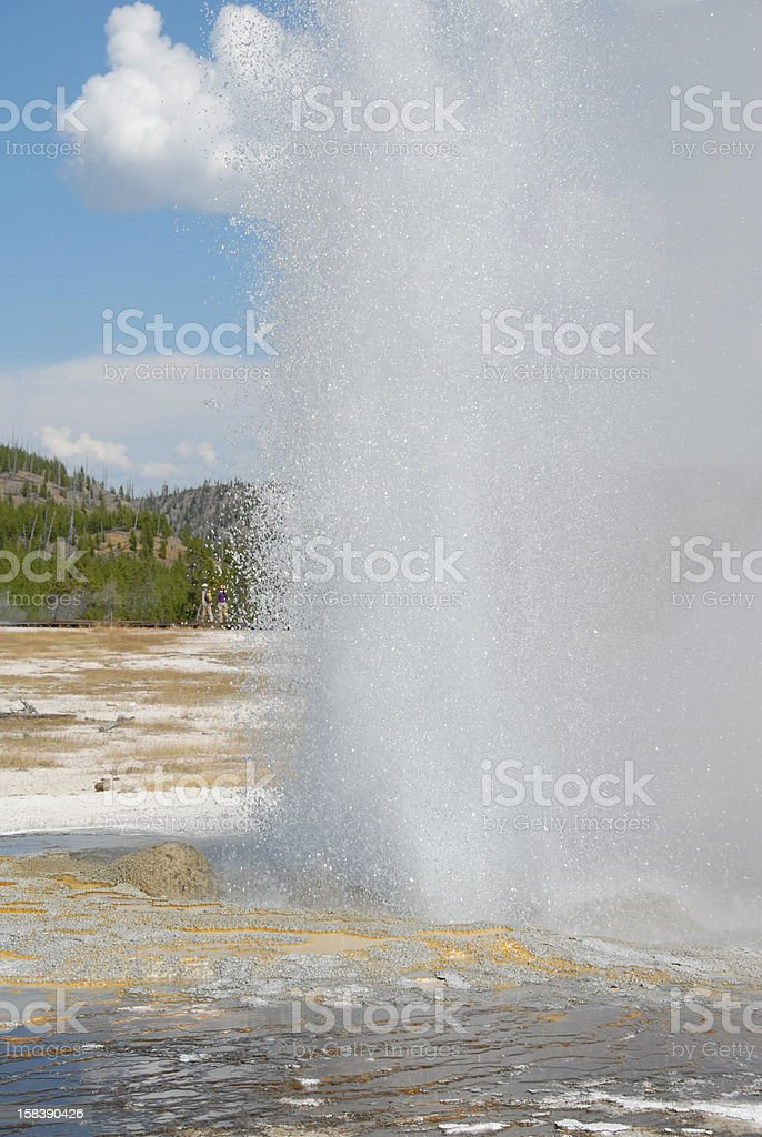 Geyser erupts at Biscuit Basin in Yellowstone National Park stock photo