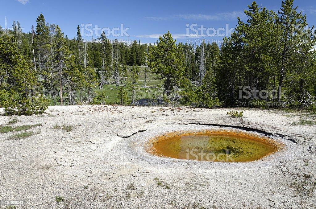 geyser in Yellowstone royalty-free stock photo