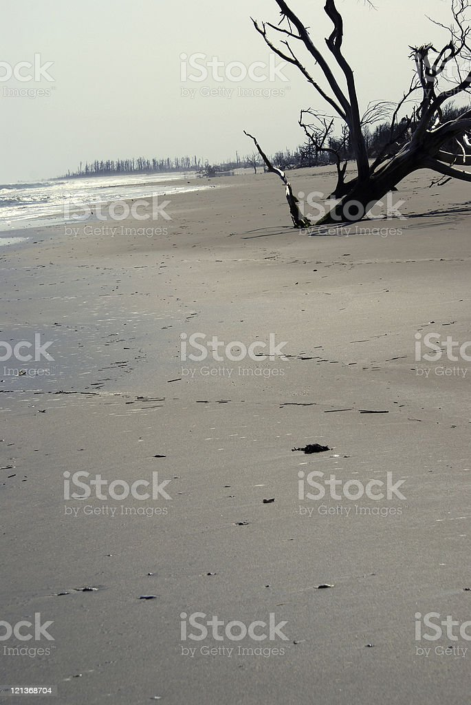 Ghost Beach royalty-free stock photo