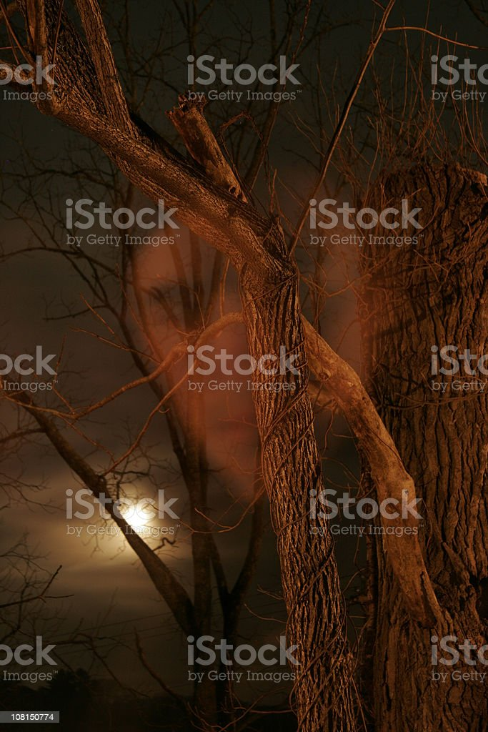 Ghost face in woods at night royalty-free stock photo