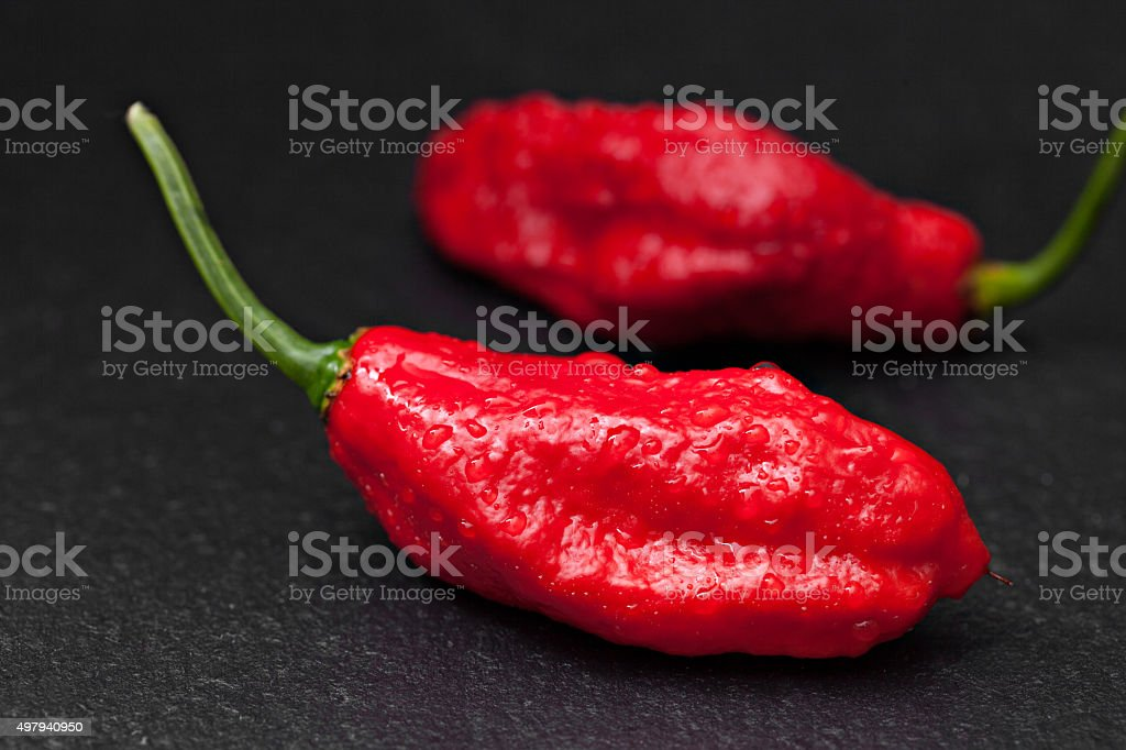 Ghost Pepper stock photo